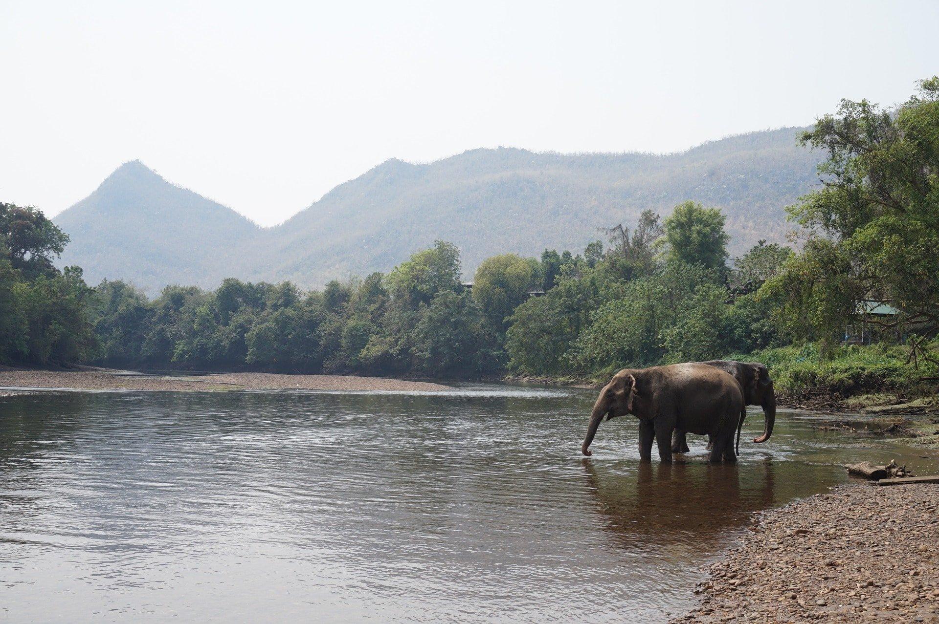 Itinerario por Tailandia en 15 días - 7