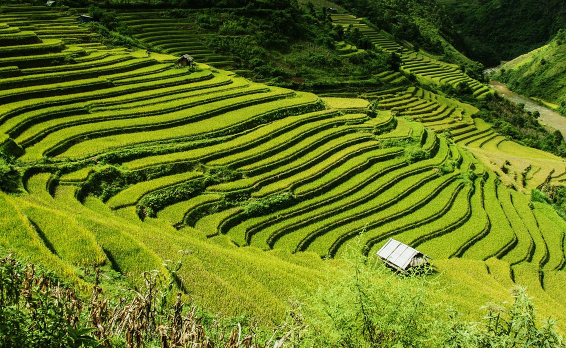 Qué visitar en Vietnam 8