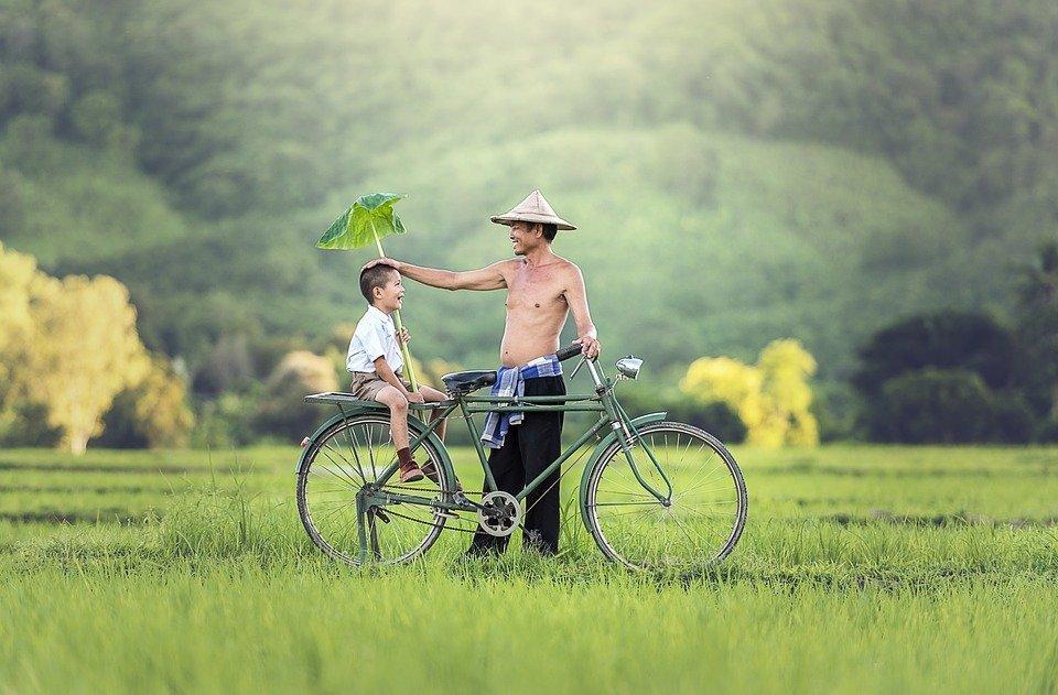 Qué visitar en Vietnam 9