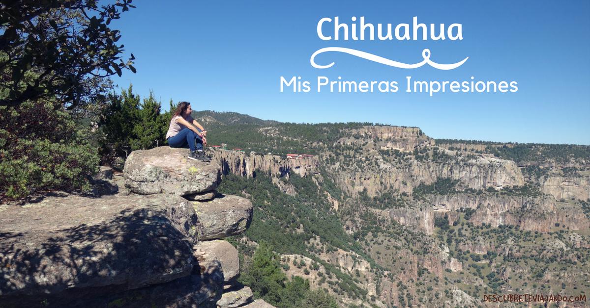 Chihuahua Mis Primeras Impresiones Portada