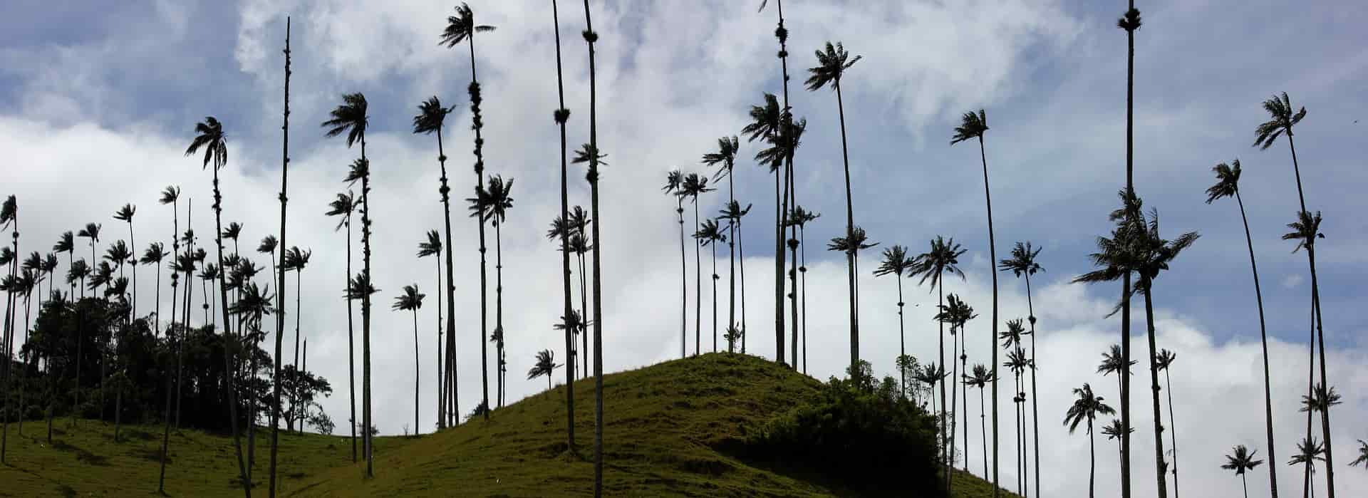 Qué visitar en colombia en 15 días 1