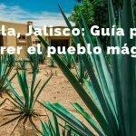 Qué hacer en Tequila Jalisco: Guía Completa