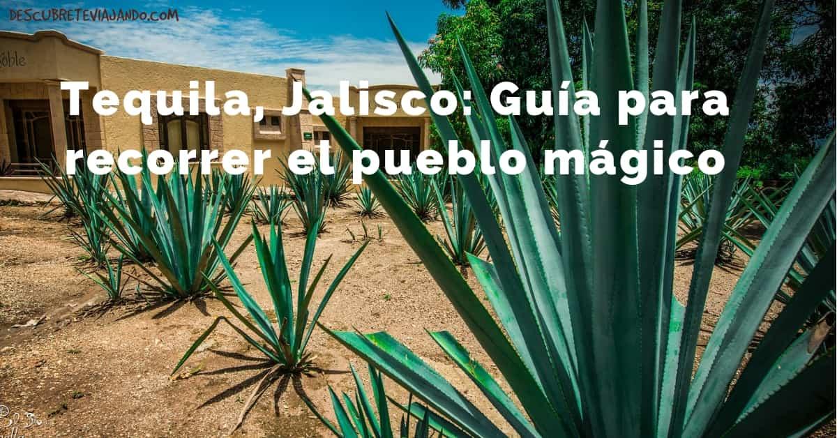 Qué hacer en Tequila Jalisco Portada-min