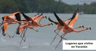 lugares para visitar en yucatan (1)