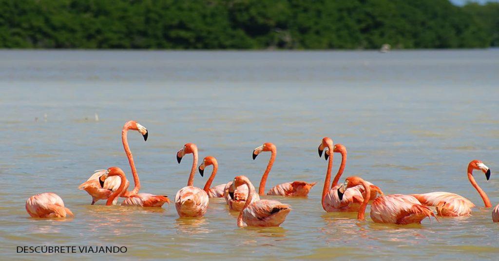 lugares para visitar en yucatan 5 (1)