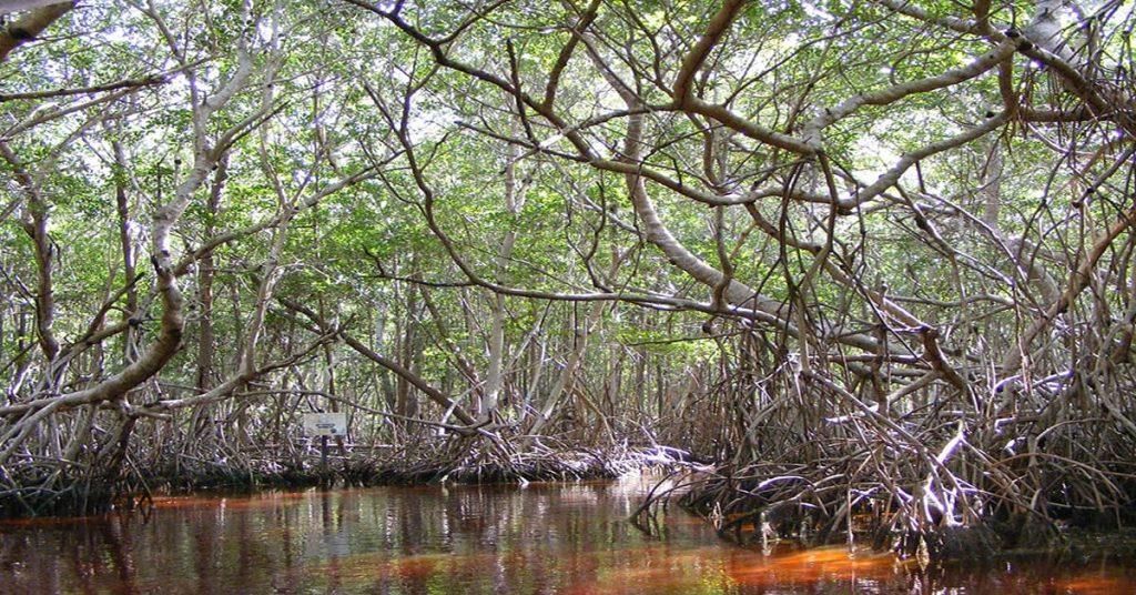 lugares para visitar en yucatan 6 (1)